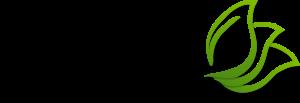 Phobos logo transparent