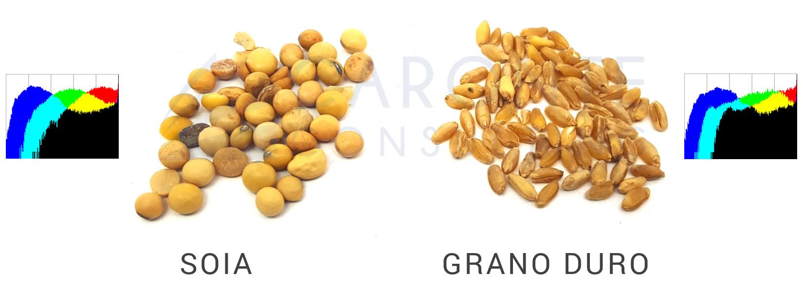 Visione Artificiale - Soia e grano duro