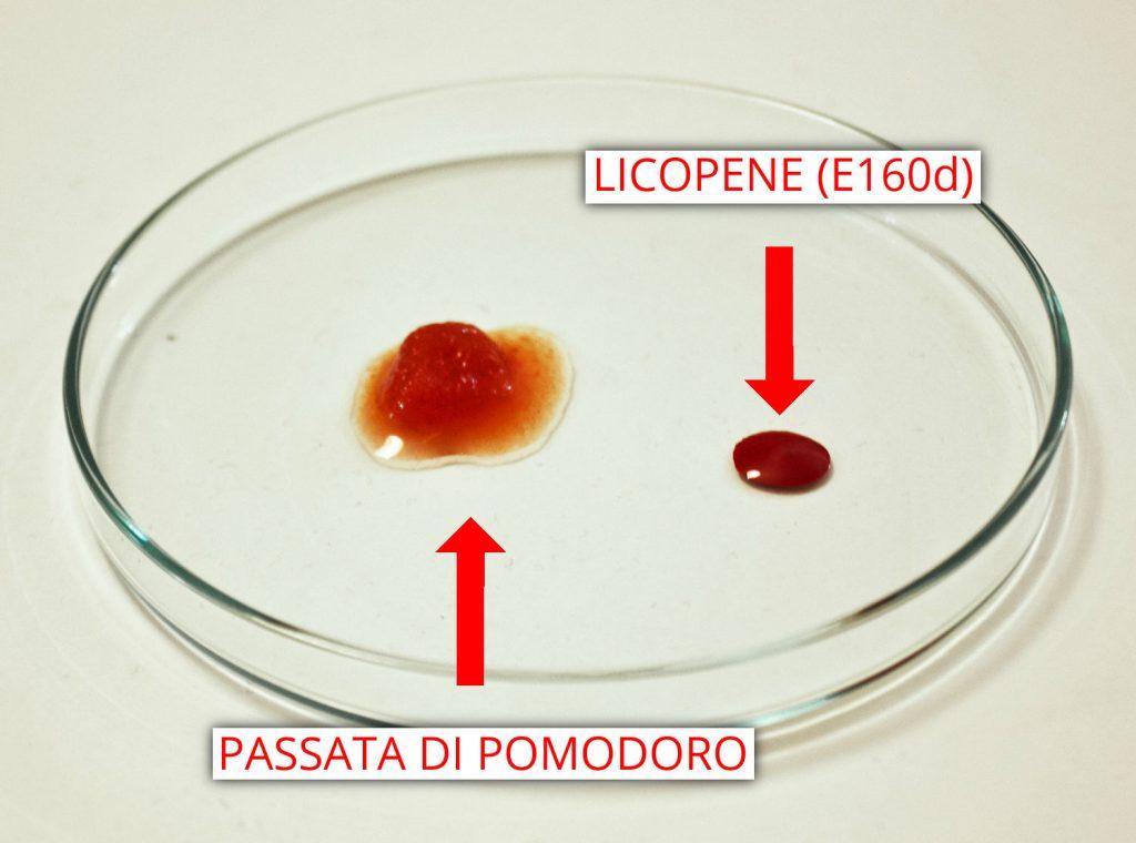 Licopene vs passata di pomodoro - Caronte Consulting