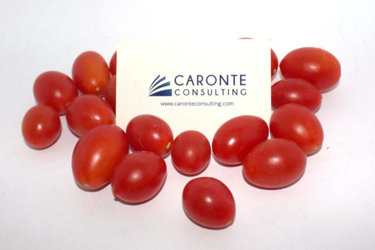 Finding pesticides in tomatoes Cover - Caronte Consulting